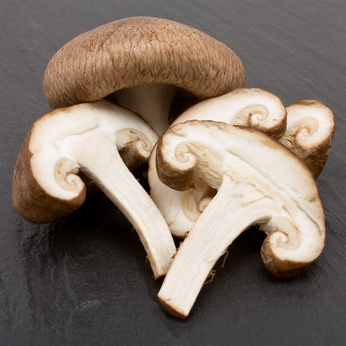 Shitake mushrooms support the immune system says Dara Thompson A naturopathic Doctor in Hilo, Hawaii